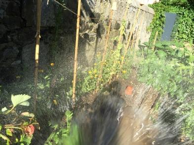 arrosage Jardins des Délices