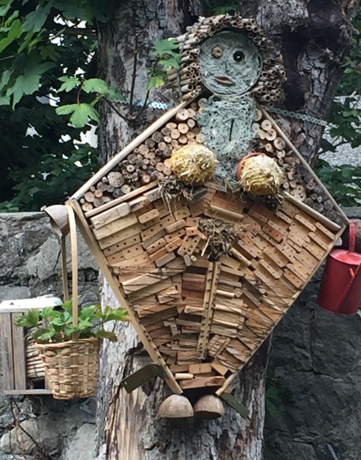 nana-a-insectes